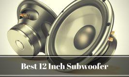 12 Inch Subwoofer